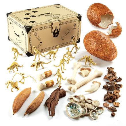 Dinosaur box of bones