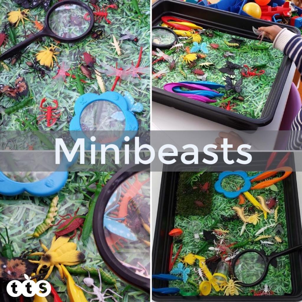 minibeast investigations in a tuff spot tray