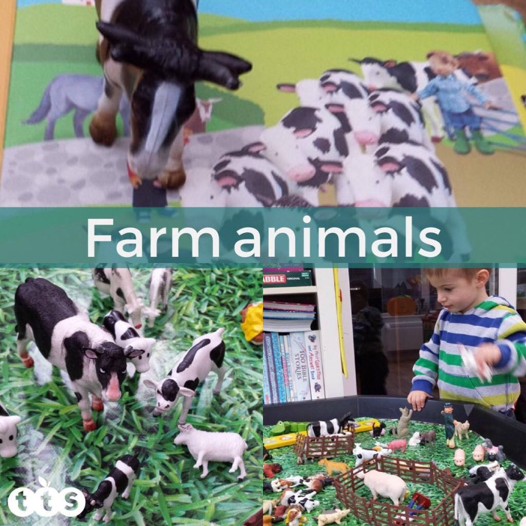 Farm animals in a tuff spot tray