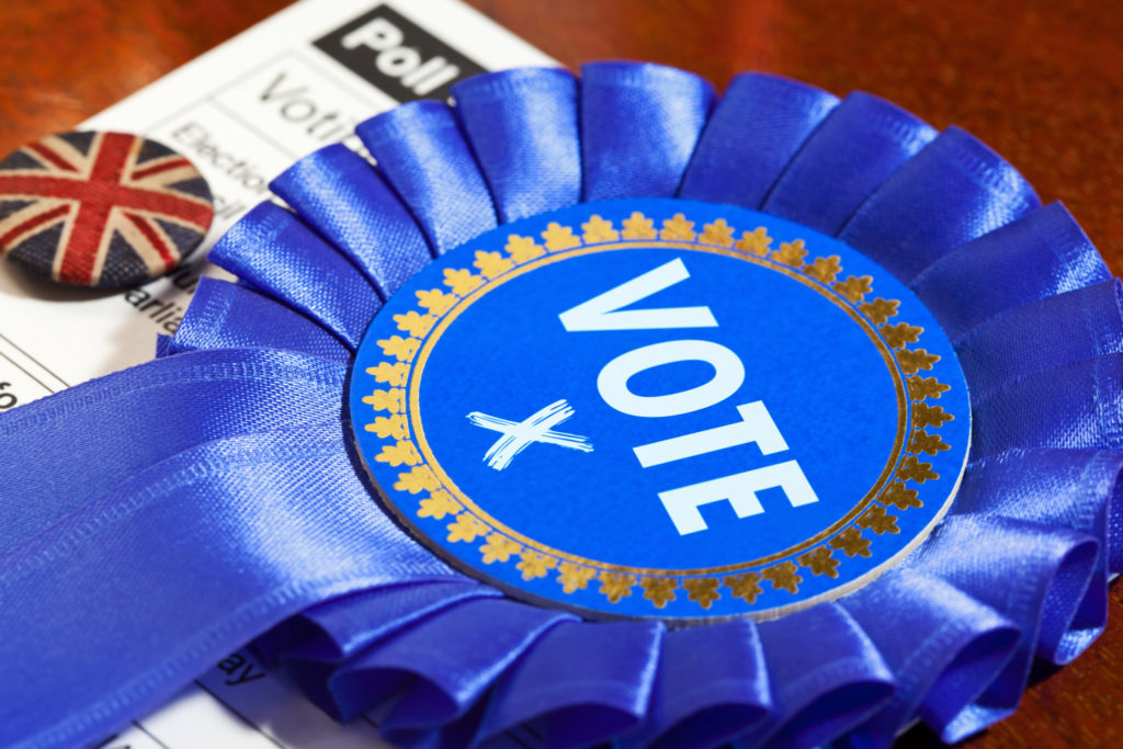 Tory Party Vote