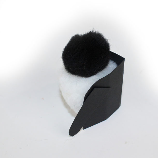 Penguin chicks 4