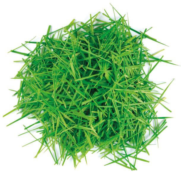 grass cuttings