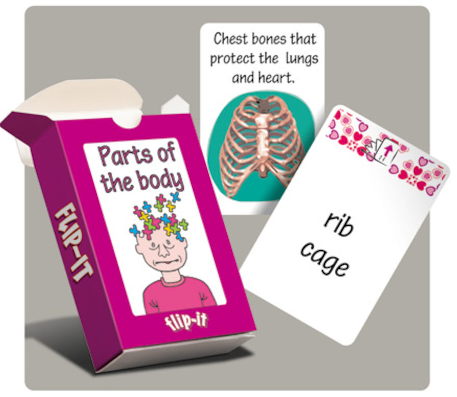 Parts of the body flip it cards