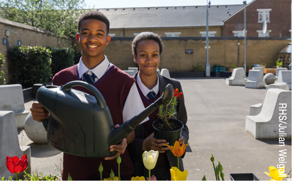Growing the next generation - RHS campaign for School Gardening